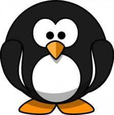 foto Pinguino_LucaY.jpg